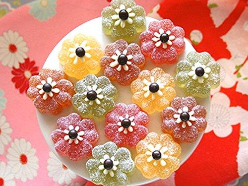 Silikomart Silicone Easy Chocolate Mold, Flowers
