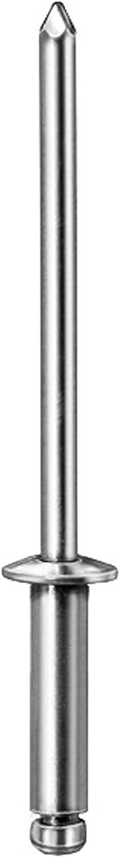 100 1//8 Blind Rivets 1//4 Head Diameter 1//2 Length