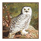 Snowy Owl By Archibald Thorburn Counted Cross Stitch Pattern