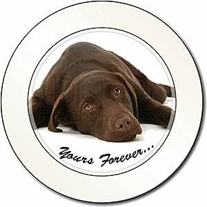Chocolate Labrador Perro Amor Impuesto de matriculación disco regalo permisionar