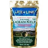 Lifeline Organic Ocean Kelp Dog and Cat Supplement, 1-1/2-Pound