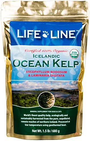 Life Line Pet Nutrition Organic Ocean Kelp Supplement for Skin & Coat, Digestion, Teeth & Gums in Dogs & Cats, 1-1/2-Pound
