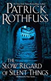 Book cover from The Slow Regard of Silent Thingsby Patrick Rothfuss
