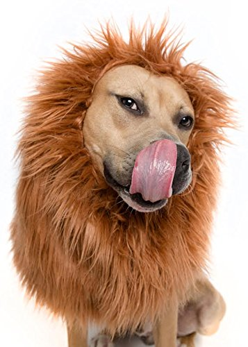 [Lion Mane Costume and Big Dog Lion Mane Wig - Large Dog Costumes by Pet Krewe] (Make Lion Costume For Dogs)
