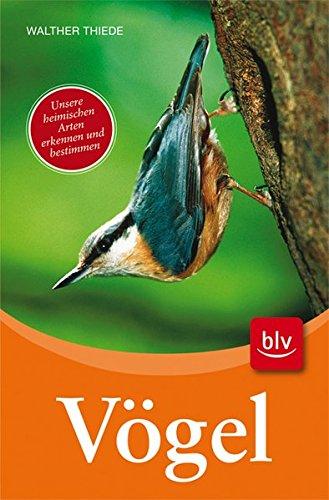 Vögel: Unsere heimischen Arten erkennen und bestimmen