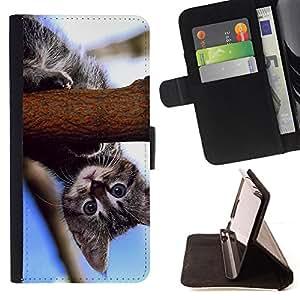 BullDog Case - FOR/Samsung Galaxy S3 III I9300 / - / curious baby kitten cat blue nature /- Monedero de cuero de la PU Llevar cubierta de la caja con el ID Credit Card Slots Flip funda de cuer