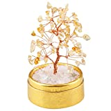 rockcloud Feng Shui Natural Crystal Mini Money Tree in Box Decoration for Wealth and Luck Citrine