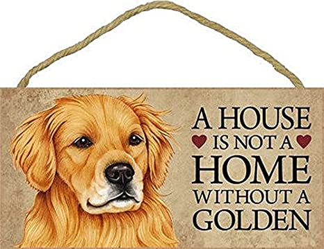A House Is Not A Home MALTIPOO Dog 5x10 Wood SIGN Plaque USA Made