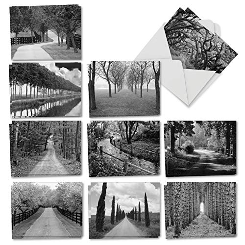 Tree Lines - 20 Landscape Note Cards with Envelopes (4 x 5.12 Inch) - Box of Blank Greetings Cards - Rural Black and White Photos, Assorted Tree Covered Scenery (10 Designs, 2 Each) AM3313OCB-B2x10