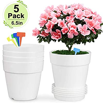 Farielyn-X 6.5 inch Plastic Flower Plant Pots/Container Indoor, White Set of 5 Planters, with Drainage Trays Modern Round Decorative Gardening Pot for All House Plants, Succulents, Flowers : Garden & Outdoor
