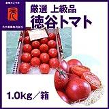 フルーツトマト トマト ビアンコ08 シュガートマト 高知県日高村産 JAコスモス 約1kg 12~20個