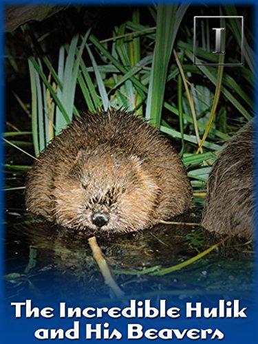 The Incredible Hulik and His Beavers - Wildlife Beaver