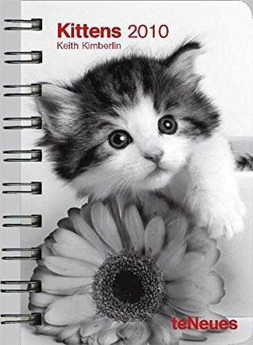 Kittens 2010. Taschenkalender Deluxe
