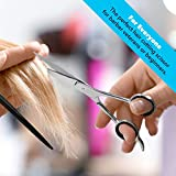 Equinox Professional Shears with Finger Rest and