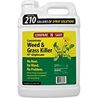 Compare-N-Save Concentrate Grass and Weed Killer, 41-Percent Glyphosate, 2.5-Gallon