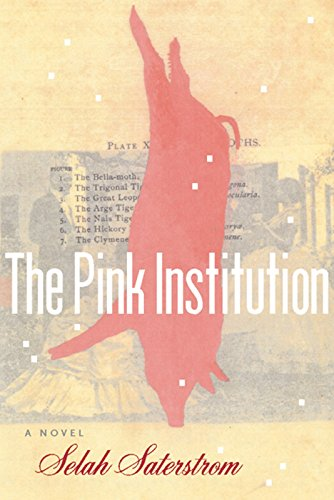 - The Pink Institution