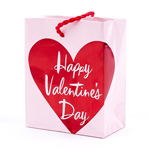 Hallmark Valentine's Day Gift Card Holder Mini Gift Bag (Pink Happy Valentine's Day) ()