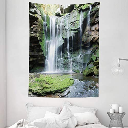 Ambesonne Waterfall Tapestry, Rocky Waterfall to Pond Running Off Scenic Nature Themed Picture Print, Wall Hanging for Bedroom Living Room Dorm, 60 X 80 , Green Grey