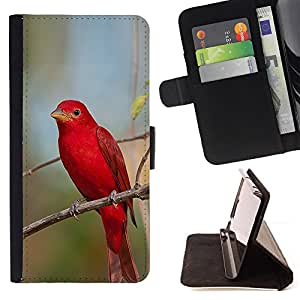 Jordan Colourful Shop - Red Spring Songbird Nature Branch For Apple Iphone 5C - Leather Case Absorci???¡¯???€????€?????????