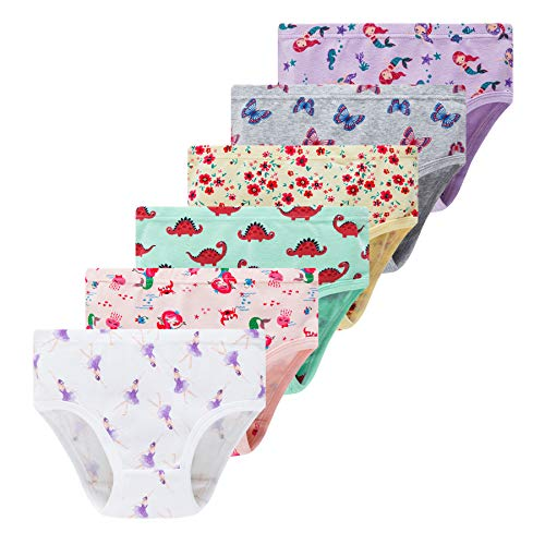 Winging Day Little Girls Baby Cartoon Soft Hipster Assorted Prints Underwear Size 2T/3T (6-Pack)
