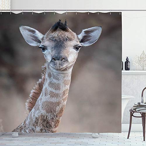 Ahawoso Shower Curtain Set with Hooks 66x72 African New Splendid Mouth Save Africa Long Born Mammal Face Giraffe Photography Neck Incredible Bathroom Curtains Waterproof Polyester Fabric Bath Decor
