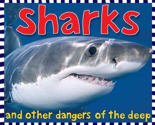 Sharks (Smart Kids) pdf epub