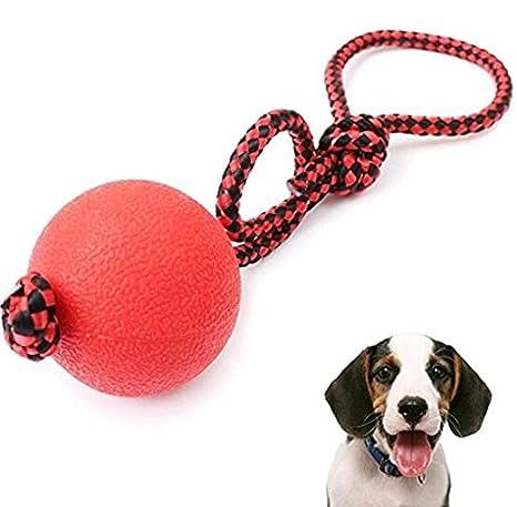 Mio.oo Cuerda de Pelota de Juguete para Perro, Indestructible ...
