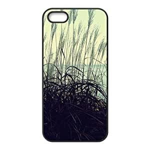 Personalized Creative Cell Phone Case For iPhone ipod touch4,attractive reed view