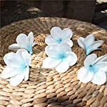 Artificial-Plumeria-Natural-Real-Touch-Artificial-Flower-White-Yellow-Frangipani-Plumerias-Flower-Heads-for-Cake-Decoration-and-Wedding-BouquetsTiffany-Blue