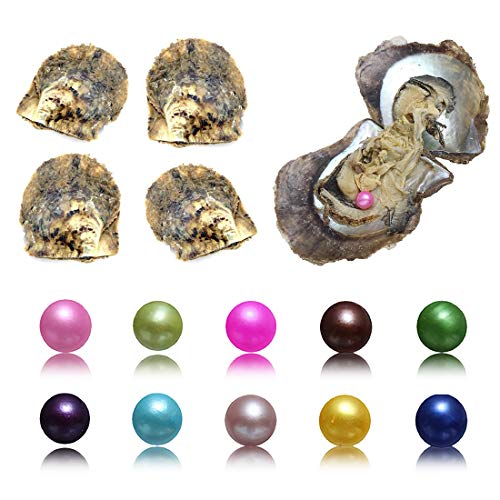 10PC Akoya Pearl Oysters with Round Pearls Inside Love Wish 10 Different Color Saltwater Cultured (7-8mm)