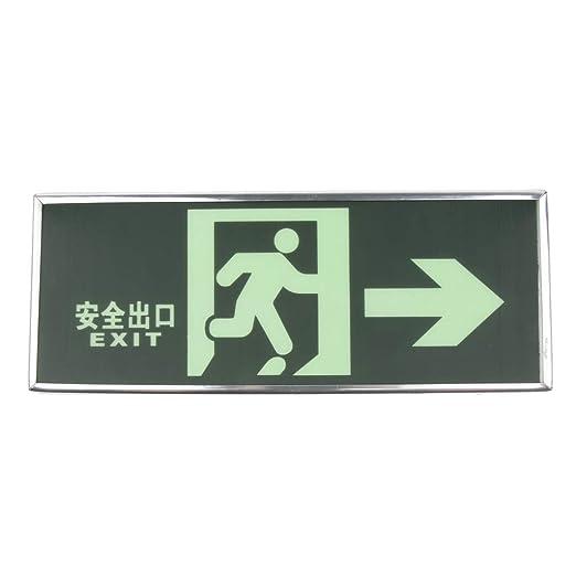 FLAMEER Exit Cartel Iluminado iluminación de Emergencia Not ...