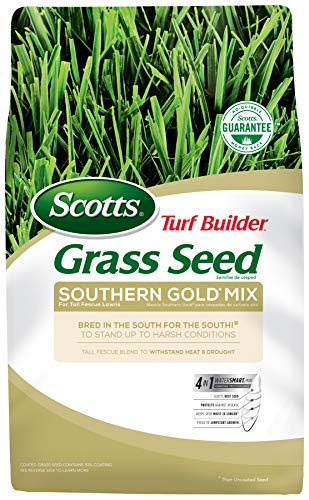 Scotts Turf Builder Grass Seed - Southern Gold Mix for Tall Fescue Lawns, 7-Pound (Sold in select Southern -