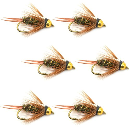 Nymphs Fly Set (The Fly Fishing Place Bead Head Prince Nymph Fly Fishing Flies - Set of 6 Flies Hook Size 10)