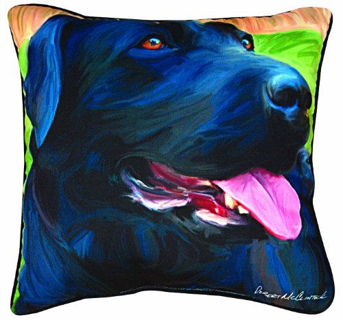 Manual Handsome Black Lab Paws and Whiskers Decorative Square Pillow, 18-Inch