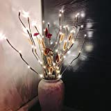 Teepao 6 Pack Branch Lights - Led Branches Battery Powered Decorative Lights Tall Vase Filler Willow Twig Lighted Branch for Home Decoration- 77cm 20 LED