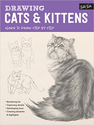 drawing cats kittens learn to draw step by step how to draw paint