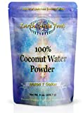Earth Circle Organics Pure USDA Certified Organic Coconut Water Powder, Kosher, Makes 4 Litres of Delicious Coconut Water
