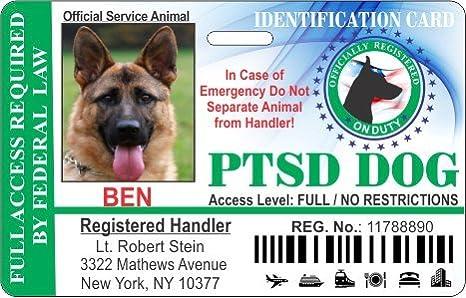 f46915cc61bc Amazon.com : IDCards4U Holographic PTSD Dog Horizontal Badge ID : Pet  Supplies