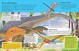 Animal Kingdom Sticker Activity Book: Dinosaurs and Bugs
