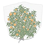 Agfabric Plant Cover,30''-W x 60''-H In-shape Bag with Rope,Insect Barrier, Insect Netting