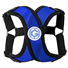 Gooby - Comfort X Step-in Harness, Choke Free Small Dog Harness with Micro Suede Trimming and Patented X Frame, Blue, Large