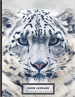 Snow Leopard 2021 calendar and notebook: Dual layout   months and