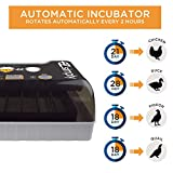 EZ.SIMPLY All-in-One Egg Incubator for Hatching