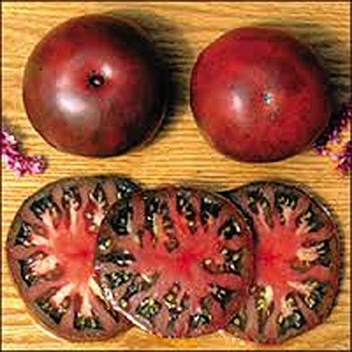 Brandywine Tomato Plants - TOMATO, BLACK FROM TULA TOMATO SEED, ORGANIC, NON- GMO, 25 SEEDS PER PACKAGE