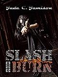 Slash and Burn (Bullet Series Book 5) (Rock Star Romance)
