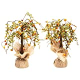 Honey In Me Pumpkins Small Fall Medley 13 x 5 Artificial Harvest Plant Tree Set of 2