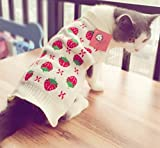 Pet Sweater Knitwear for Dogs & Cats Strawberry Small (White & Red S) Size Review