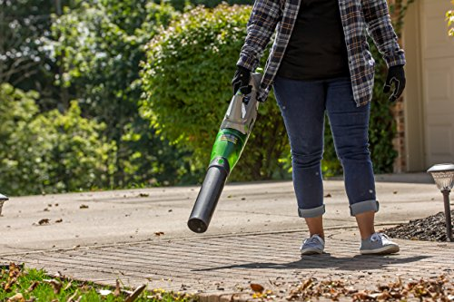 Earthwise LB20058 58 Volt Variable Leaf Blowers Vacuums