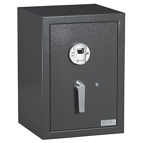 Protex Biometric Burglary Safe (HZ-53) ()