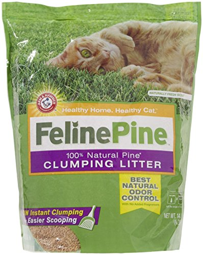 Arm & Hammer Feline Pine Cat Litter 14 Lb Bag ()
